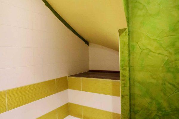 Une idée de salle de bain pour les amoureux du vert.